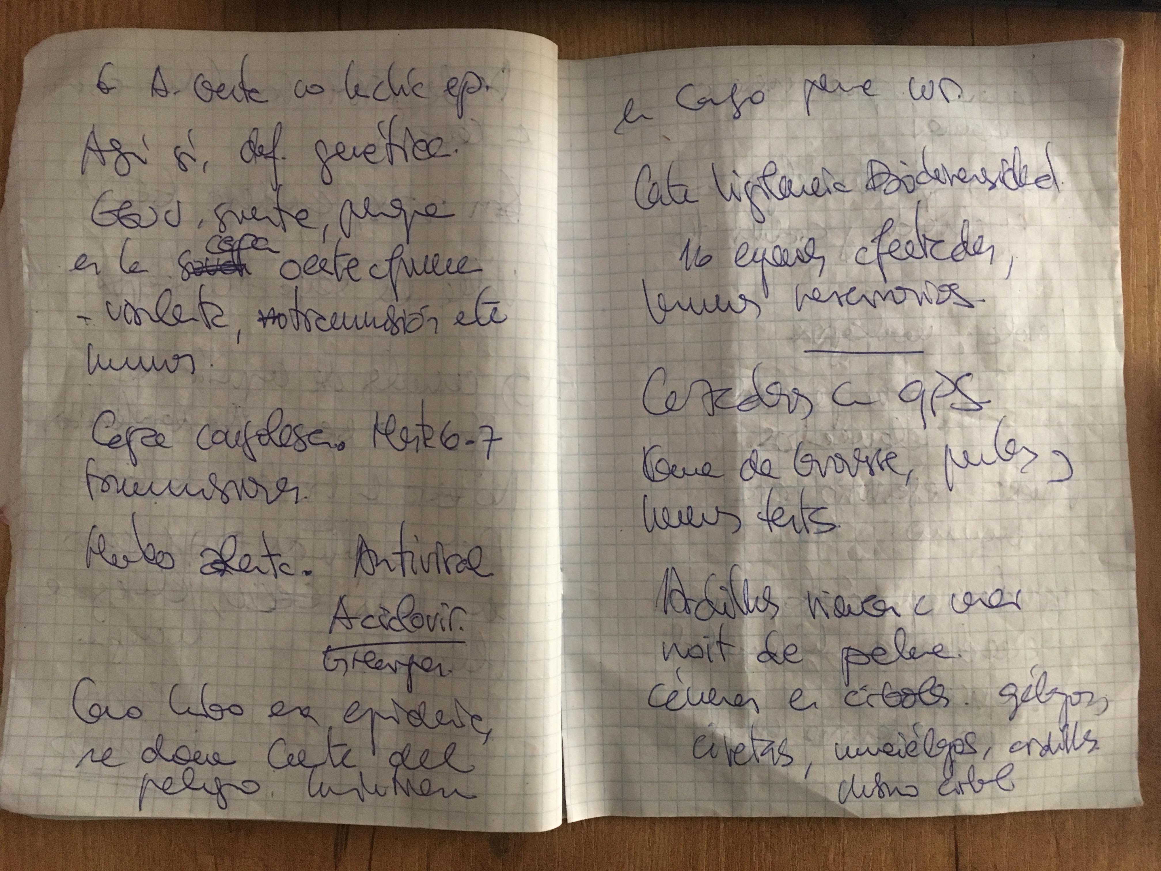 Cuaderno de notas de José Naranjo (cedida por el periodista)